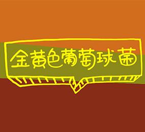 金黄色葡萄球菌食物中毒
