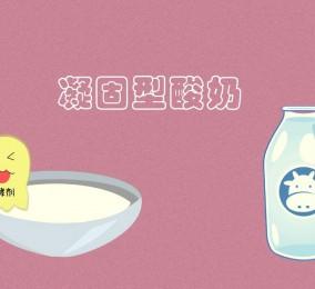 秒懂:凝固型酸奶