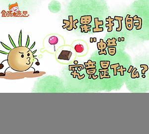 """食品添加剂科普视频:水果上打的""""蜡""""究竟是什么?(秒懂巴西棕榈蜡)"""