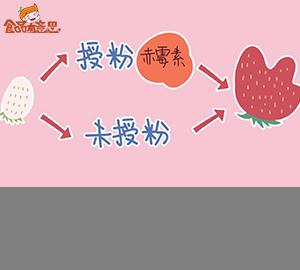 畸形草莓是膨大剂催的吗?能不能吃?