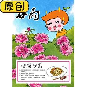 科普海报:24节气之谷雨与香椿炒鸡蛋 (2)