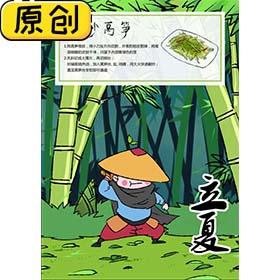 科普海报:24节气之立夏与炒莴笋 (2)