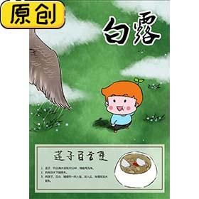 科普海报:24节气之白露与莲子百合煲 (2)