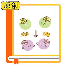科普漫画:无糖食品真的不含糖吗?(食育) (1)