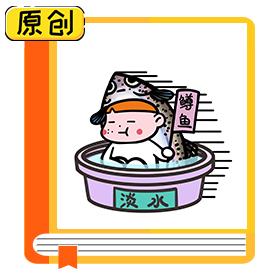 科普漫画:你买的三文鱼是真的吗? (1)