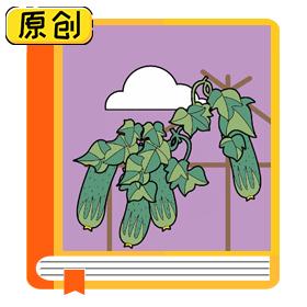 科普漫画:黄瓜明明是绿色的,为什么叫黄瓜?(食育) (1)