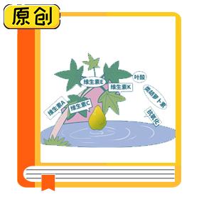 科普漫画:你知道大部分番木瓜都是转基因的吗? (1)