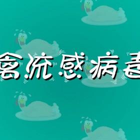 禽流感病毒 (2)