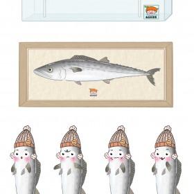 鲅鱼 (1)