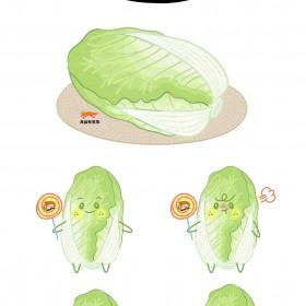 大白菜、娃娃菜、圆白菜 (5)