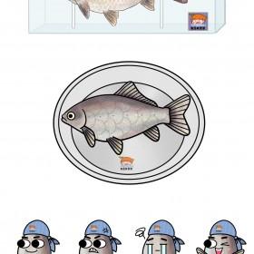 鲫鱼、鲤鱼、鳗鱼、鲢鱼、鲭鱼 (5)