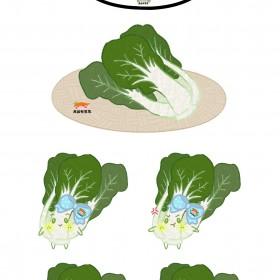 苜蓿、鱼腥草、奶白菜、生菜、油菜、油麦菜 (6)