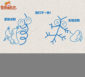 �po帐悠dan憾己�淀fen,为什么土豆yi煮就lan而豆lei却耐煮难shu?(直链淀fen和支链淀fen)