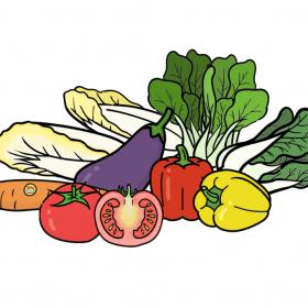 食品  蔬菜 (1)