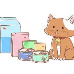宠物食品 (2)
