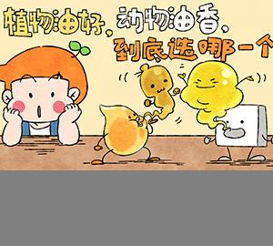 植物油好,动物油香,到底选哪一个?