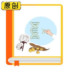 科普漫画:普通育种和转基因育种有什么区别? (2)